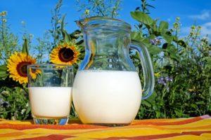 Gastric balloon diet, milk.